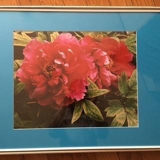 【美品】写真フレーム61×46センチ