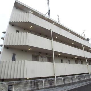 🉐初期費用6万円🙂大宮駅まで8分🏠広い33㎡❤️BT別2人入居...