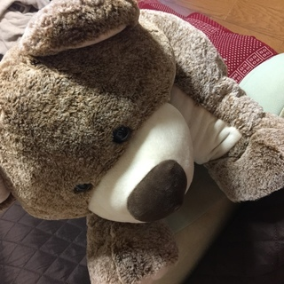 コストコ/KELLYTOY Pillow Chums くまのぬい...