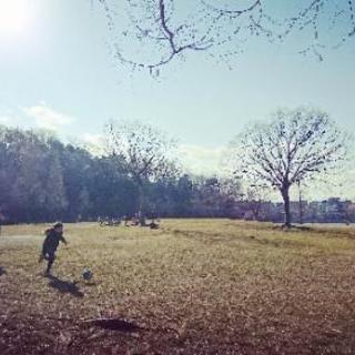 パークヨガ in平和公園~自然のエネルギーと 五感を感じよう~