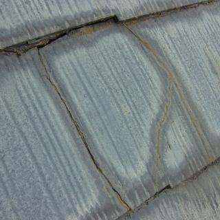 野木町の屋根屋でございます。屋根や雨樋、軒天、波板の修理を承ります♪