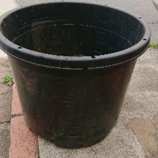 6個 大型植木鉢 プランター 果樹・庭木用NPポット