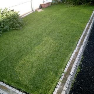 本日取引完了予定。人工芝 2×5m(元は1m×10mの商品)の画像