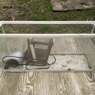 60cmスリム水槽 外掛けフィルター付 中古品