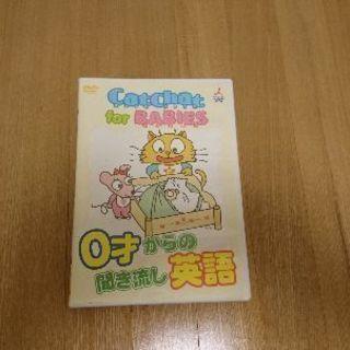Cat Chat for Babies 赤ちゃん向け英語DVD