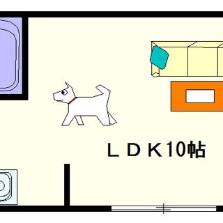【ルーエ桜川】4号タイプ!1LDKタイプ!ペットOKの物件ですね☆