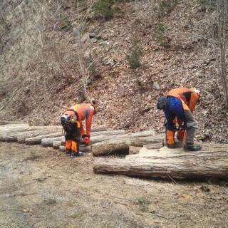 薪の原木作りに参加しませんか?持ち帰りできます。
