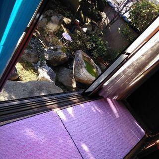 なんと!日本初‼癒やしとカウンセリングのお店