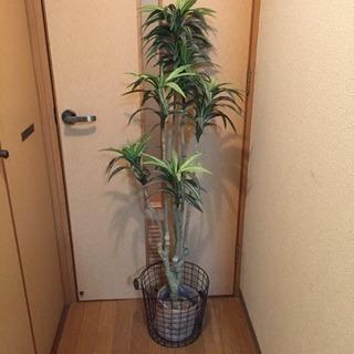 観葉植物 人工樹木 鉢付き