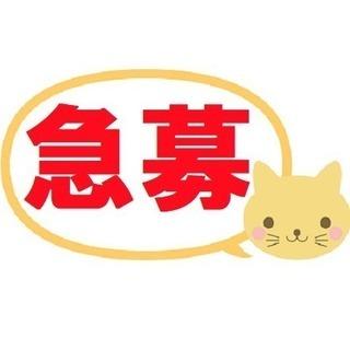 【求】経理経験者☆急募!<経理(正社員)年収300~400万円>