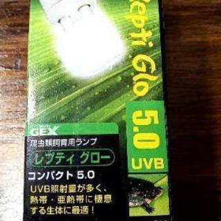 【新品】カメに良い電球