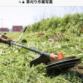 草刈り・除草・支障樹木伐採