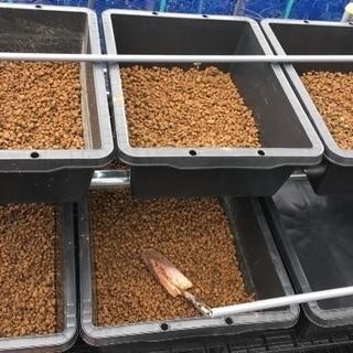🍋メダカ用 処理済赤玉土。冬越しに必須です。