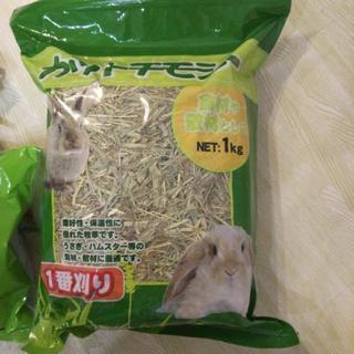 チモシー モルモット ウサギ 餌