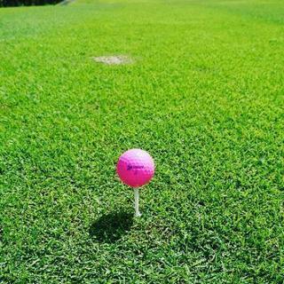 再登録 ゴルフしよう!