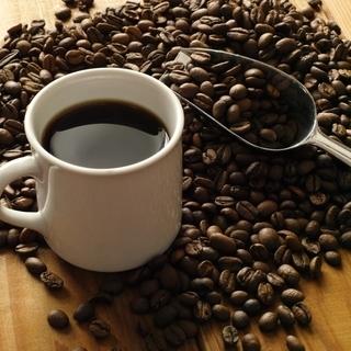 珈琲焙煎やコーヒー豆について勉強したい方募集!