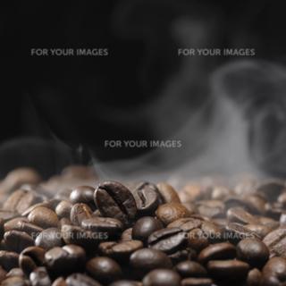 珈琲焙煎やコーヒー豆について勉強したい方募集! - 福岡市