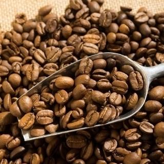 珈琲焙煎やコーヒー豆について勉強したい方募集! - 料理