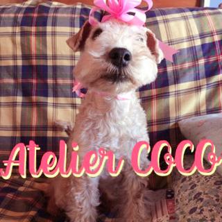 クラシックバレエ教室 Atelier COCO