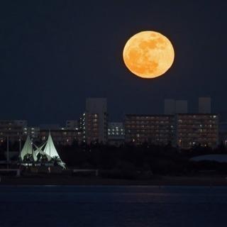 満月の夜はムーンカード