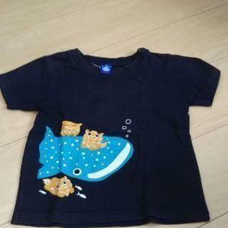 子供服・キッズ服・110センチ・美ら海水族館購入品