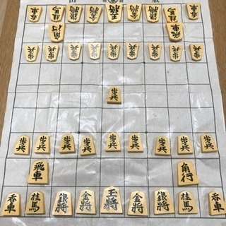 将棋の駒 プラスチック製 箱ありです