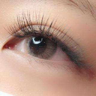 Proche eyelash