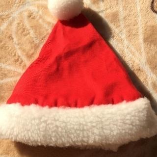 ペット用サンタ帽子、クリスマス、犬、猫