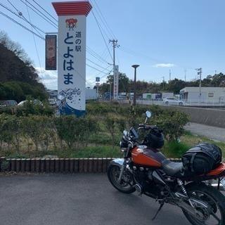ツーリング仲間募集→櫻木神社
