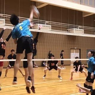 神戸でバレーボールをしませんか?