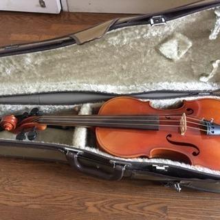スズキ violin