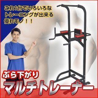 マルチトレーナー ぶら下がり健康器 送料無料 本格的 腹筋 背筋...