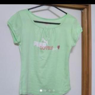 美品♡PUMA レディースTシャツ