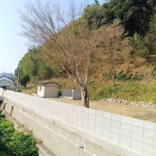 糸島 志摩桜井 ホタルが舞う小川に40m接する 広々213坪の宅地