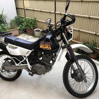 ☆スズキ ジェベル200 SH42A オフロード DJEBEL2...