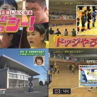 【メンバー募集】公式ドッジボールチーム「SPファイヤードラゴンズ...