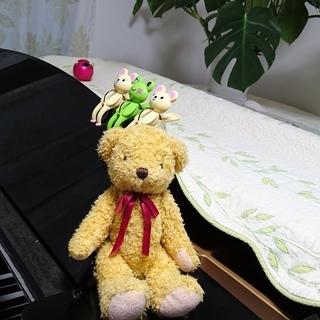 桂音楽教室 生徒募集!