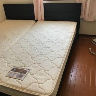 【無料配送】Sealy マットレス フレーム ニトリ製 シングルベ...