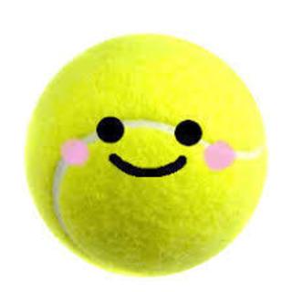 のんびりゆるく楽しくテニスしたい方(^^)主に国立市か、都営コー...