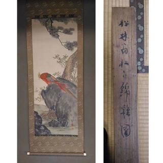 古い掛軸 藤井松林 錦鶏(キンケイ)の図 木箱あり j27