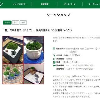 東急ハンズ渋谷店で「苔」だけを愛で、生長を楽しむコケ盆栽をつくろ...