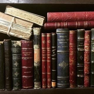 古い洋書/外国雑誌 探しています