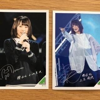 欅坂46×永谷園のカード