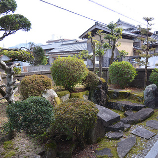 庭木、庭石、譲ります