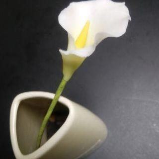 【体験】焼かずにできる・手軽にできる 粘土クラフト工芸 ~長津田アピタ