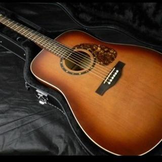 激鳴 単板 極美品 カナダNorman社アコースティックギター