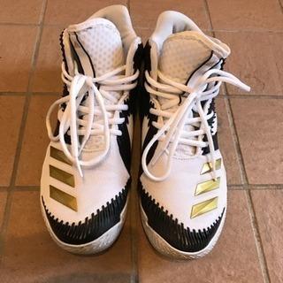 adidas spg(バスケットボールシューズ)
