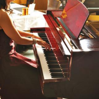 音楽の本場 ウイーンで活躍されていた講師から学べる日本でも数少ない...