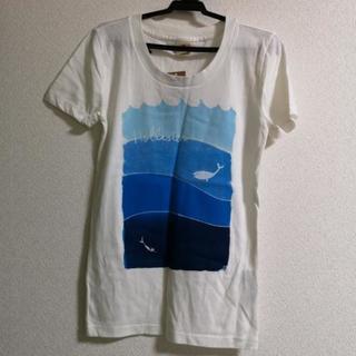 ホリスターTシャツ サイズXS