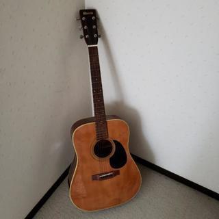 ギター morris